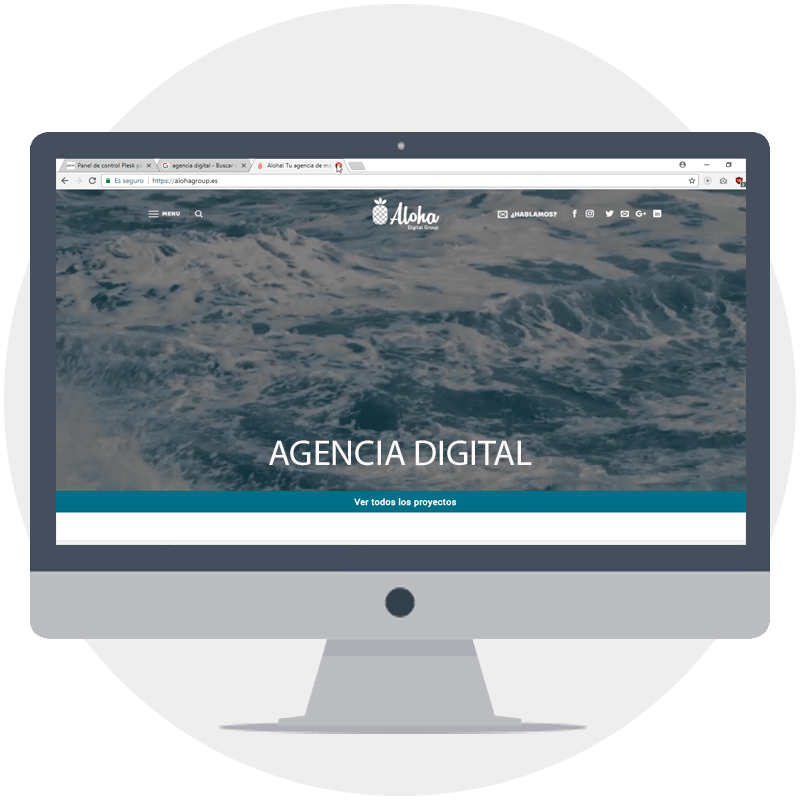plesk agencia digital hosting